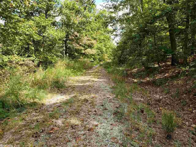 Anadarko, Cherokee Village, AR 72529 (MLS #20030840) :: United Country Real Estate