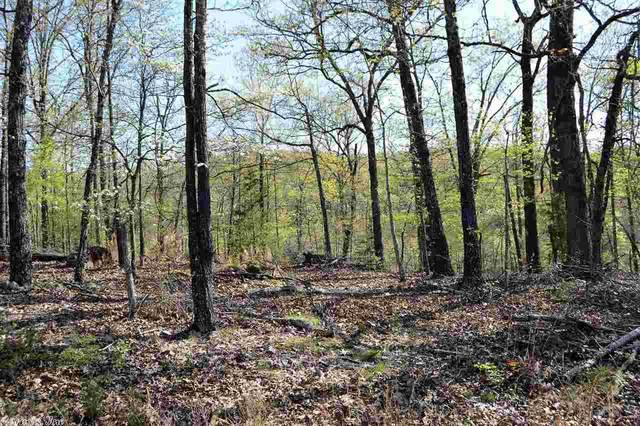 0 Cr 1084, Mountain Home, AR 72653 (MLS #20031437) :: United Country Real Estate