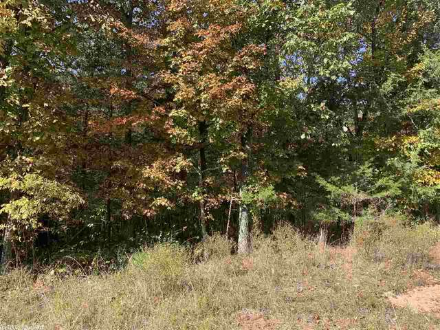 15 Thomas Circle East, Holiday Island, AR 72361 (MLS #20031826) :: United Country Real Estate