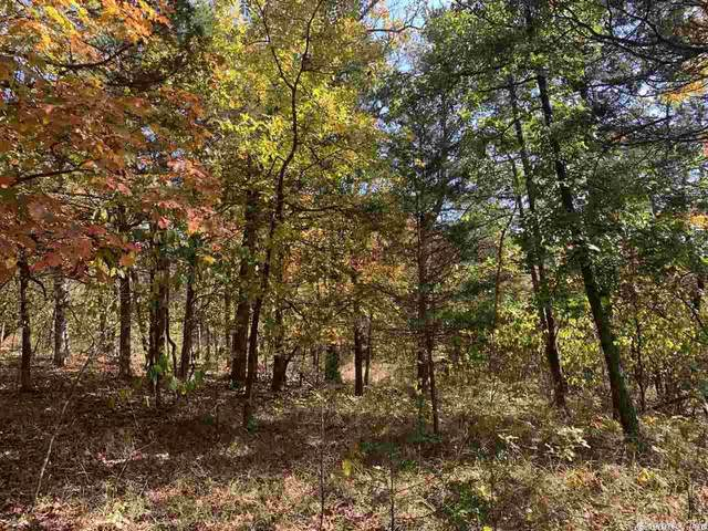 46 West Thomas Circle, Holiday Island, AR 72631 (MLS #20031831) :: United Country Real Estate