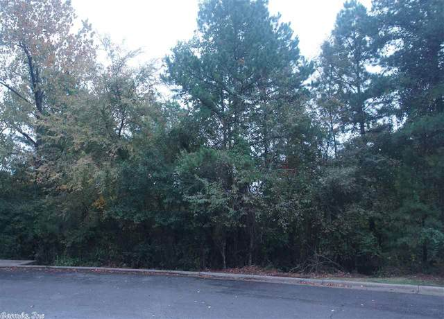 2 Reservoir Heights, Little Rock, AR 72227 (MLS #20032074) :: United Country Real Estate