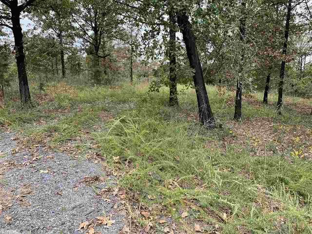 76 Crestview Rd, Conway, AR 72034 (MLS #20032588) :: United Country Real Estate