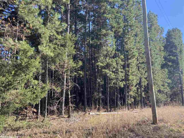 0 Carter, Rose Bud, AR 72137 (MLS #20035529) :: United Country Real Estate