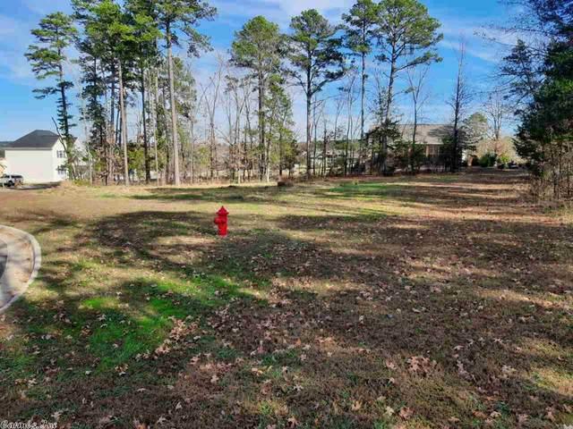 16 Wisdom Pointe, Heber Springs, AR 72543 (MLS #20036310) :: The Angel Group