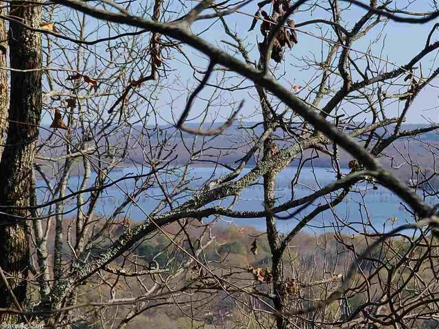 Scenic Hill Rd., Conway, AR 72034 (MLS #20036382) :: United Country Real Estate