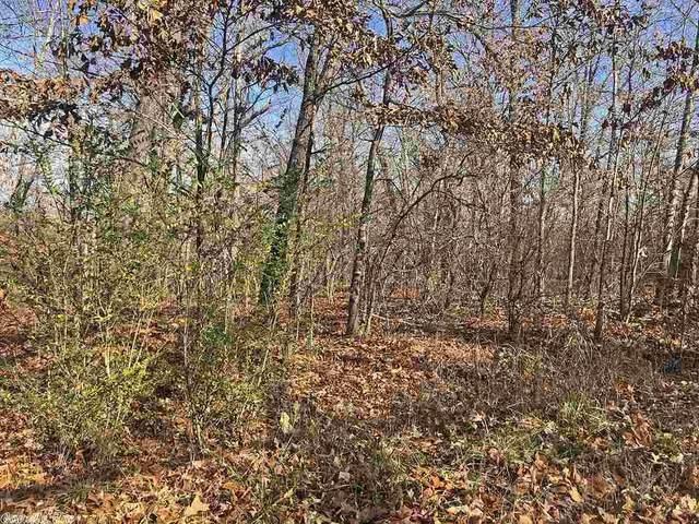 Piegan, Cherokee Village, AR 72529 (MLS #20039344) :: United Country Real Estate