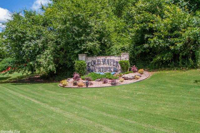 246 Coldwater Creek, Benton, AR 72019 (MLS #21000152) :: United Country Real Estate