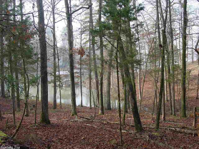83 Saldana, Hot Springs Village, AR 71909 (MLS #21000278) :: United Country Real Estate