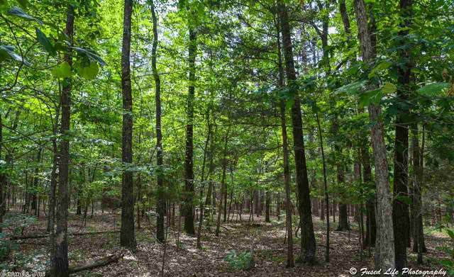 108 Grand Isle Drive, Fairfield Bay, AR 72088 (MLS #21000882) :: United Country Real Estate