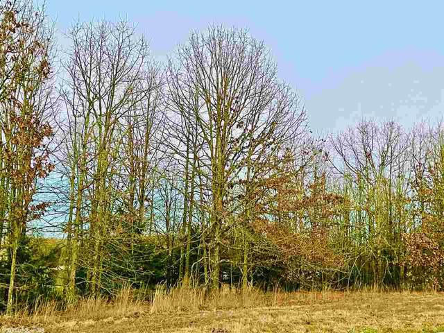1586 Calcutta, Cabot, AR 72023 (MLS #21003467) :: United Country Real Estate