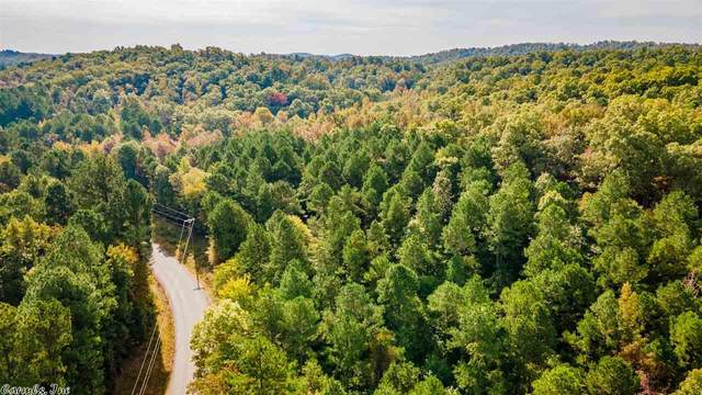 30499 Bandy Road 3, Little Rock, AR 72223 (MLS #21004668) :: United Country Real Estate