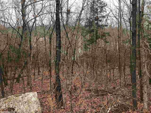 9 Chesapeake, Cherokee Village, AR 72529 (MLS #21004795) :: The Angel Group