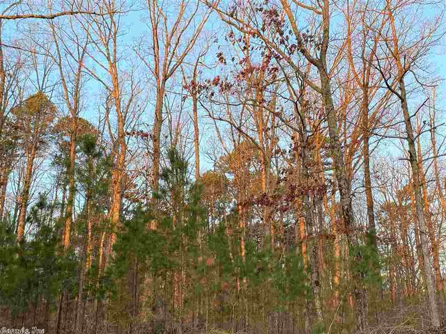 18 Pryor Mountain, Quitman, AR 72543 (MLS #21005576) :: United Country Real Estate