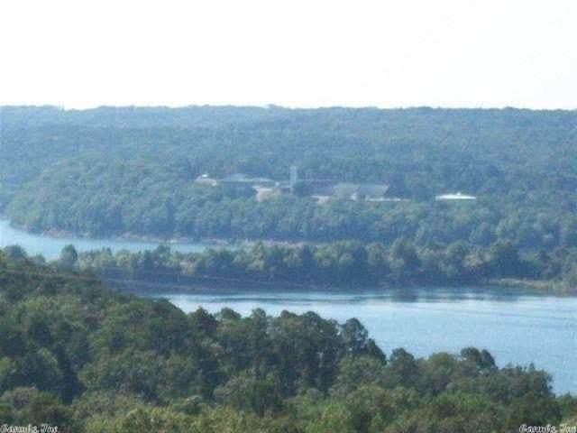 1 Bluff Drive, Edgemont, AR 72044 (MLS #21010733) :: The Angel Group