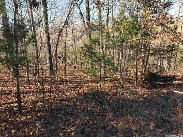 0 Cr 995, Mountain Home, AR 72653 (MLS #21011081) :: United Country Real Estate