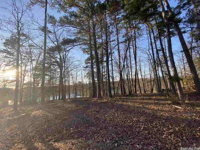 118 S Lakeshore Drive, Fairfield Bay, AR 72088 (MLS #21011297) :: United Country Real Estate