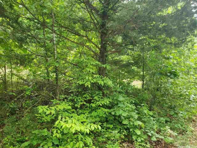1 Flathead, Cherokee Village, AR 72529 (MLS #21016034) :: The Angel Group