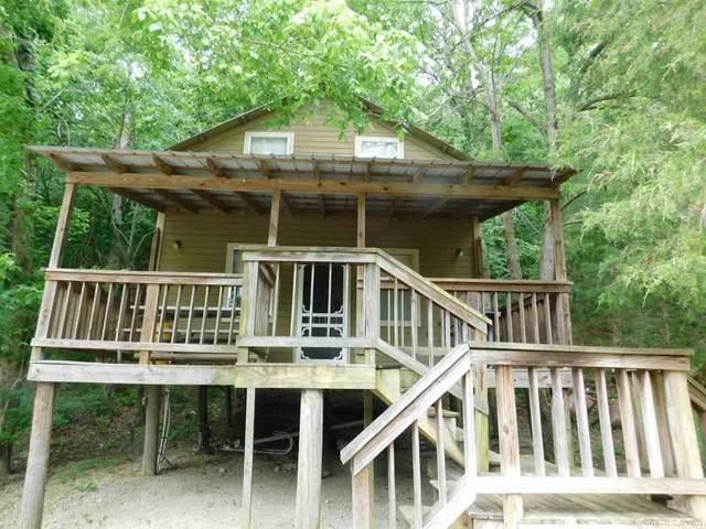 327 Springwood Terrace, Hardy, AR 72542 (MLS #21020108) :: The Angel Group