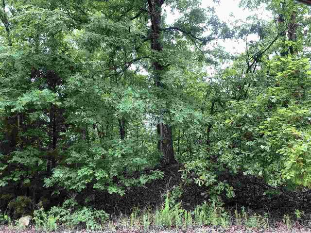 Deer Run Drive, Cherokee Village, AR 72529 (MLS #21020572) :: The Angel Group
