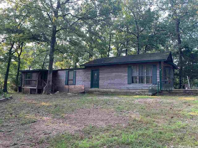 129 Delight, Royal, AR 71968 (MLS #21023582) :: The Angel Group