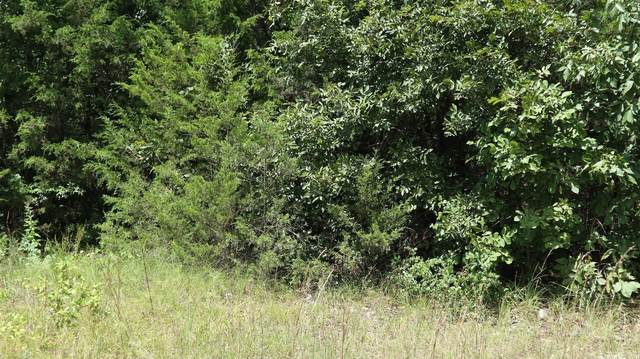 1521 W Cardinal, Horseshoe Bend, AR 72512 (MLS #21027317) :: The Angel Group