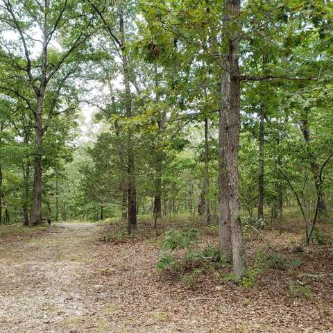 0 Mitchell, Mountain View, AR 72560 (MLS #21027691) :: Liveco Real Estate