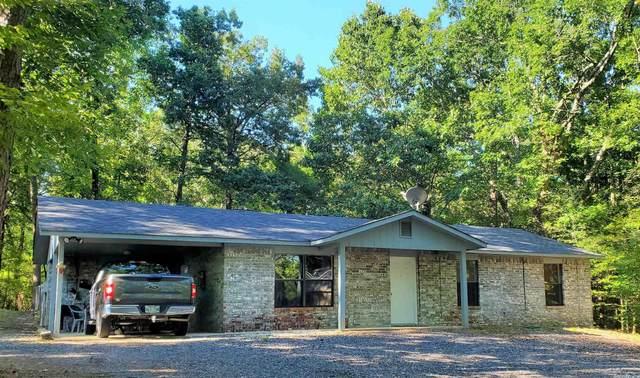 345 Polk Road 117, Mena, AR 71953 (MLS #21029927) :: United Country Real Estate