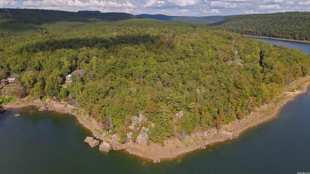 Weldon Rd, Greers Ferry, AR 72067 (MLS #21033397) :: United Country Real Estate
