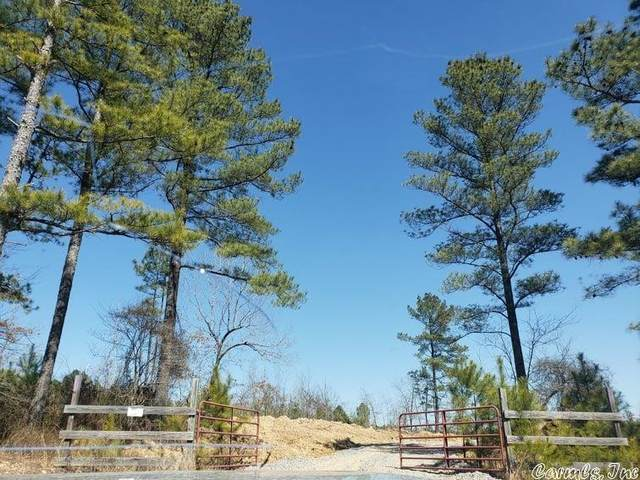 2 Tba Highway 128, Lonsdale, AR 72087 (MLS #21033911) :: United Country Real Estate