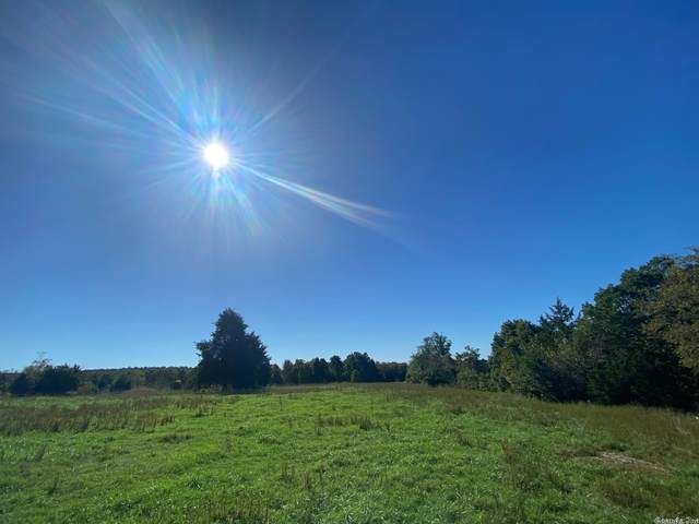 0 Hwy 9, Mountain View, AR 72560 (MLS #21033935) :: United Country Real Estate