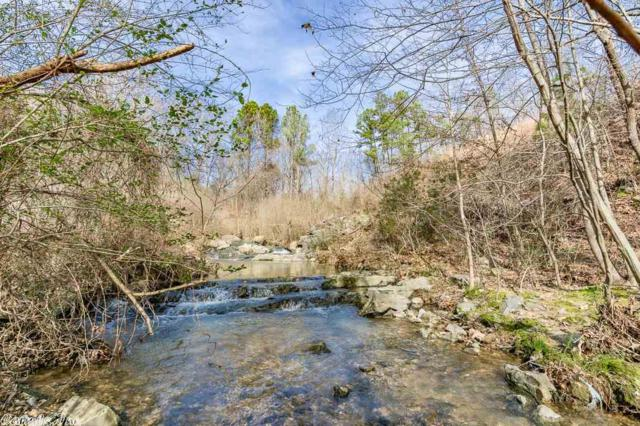 14 Windsong Bay, Hot Springs, AR 71901 (MLS #18024028) :: United Country Real Estate