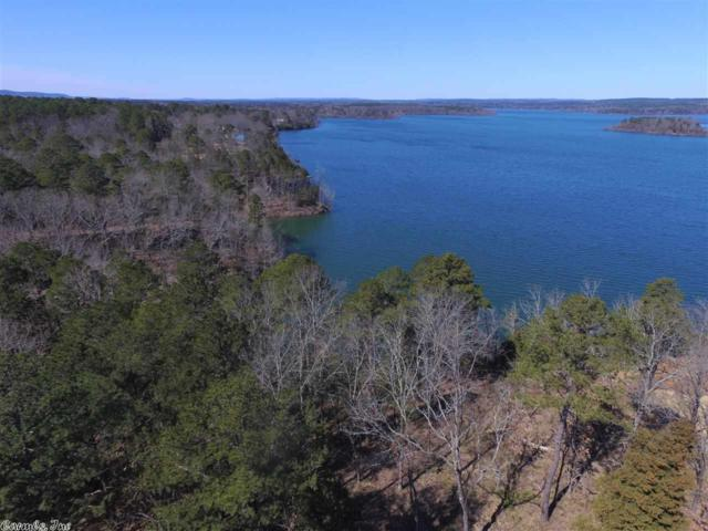 1 Wisdom Pointe Subdivision, Heber Springs, AR 72543 (MLS #19005406) :: The Angel Group