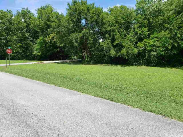 0 Maple, Mountain View, AR 72560 (MLS #19020561) :: Liveco Real Estate