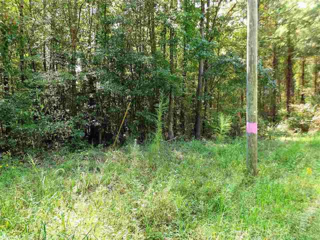 0 Shaw Wash Out Rd, Benton, AR 72015 (MLS #19029805) :: RE/MAX Real Estate Connection