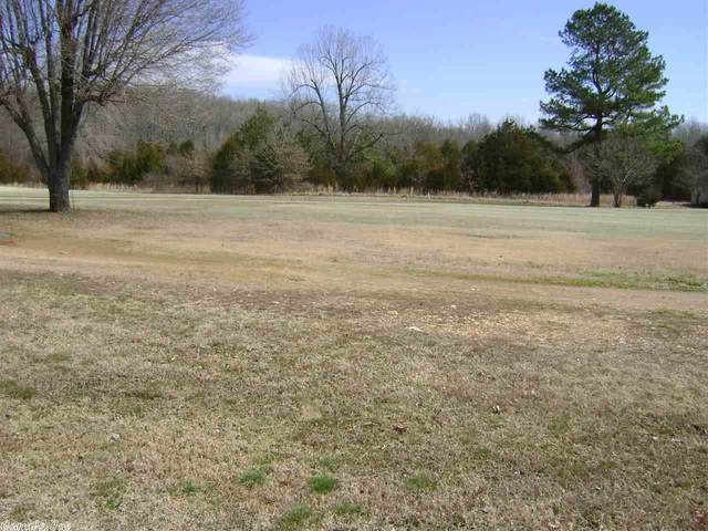 308 Wedge, Horseshoe Bend, AR 72512 (MLS #20004975) :: United Country Real Estate