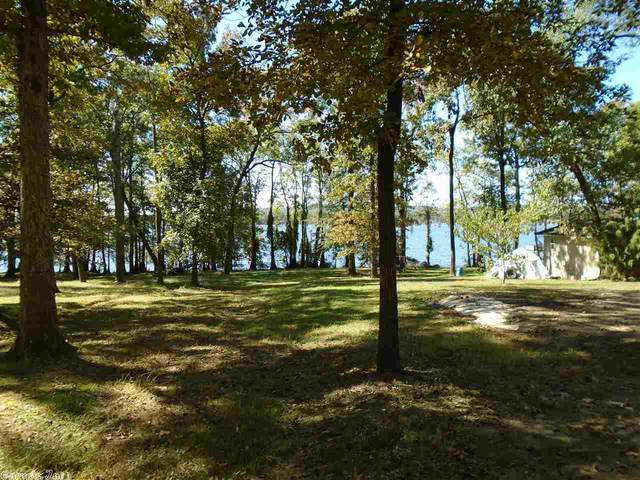 19 Crappie, Conway, AR 72032 (MLS #20031773) :: United Country Real Estate