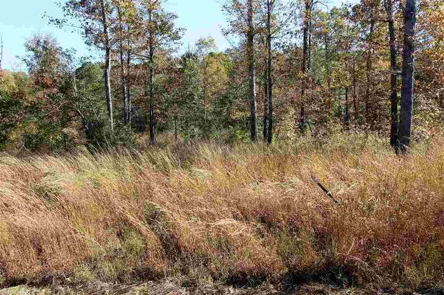 0 Grant 762 (Tract 3), Sheridan, AR 72150 (MLS #20034562) :: United Country Real Estate
