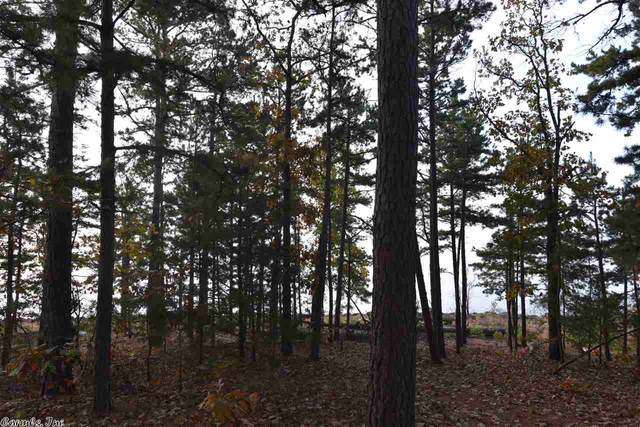 7 Lakeshore, Fairfield Bay, AR 72088 (MLS #20034609) :: United Country Real Estate