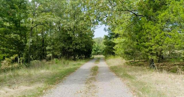 573 Manning, Mt. Vernon, AR 72111 (MLS #21033695) :: United Country Real Estate