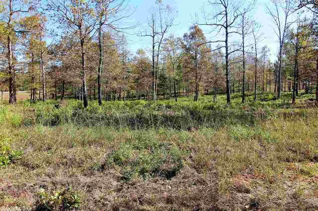 0 Grant 762 (Tract 1), Sheridan, AR 72150 (MLS #20034536) :: United Country Real Estate