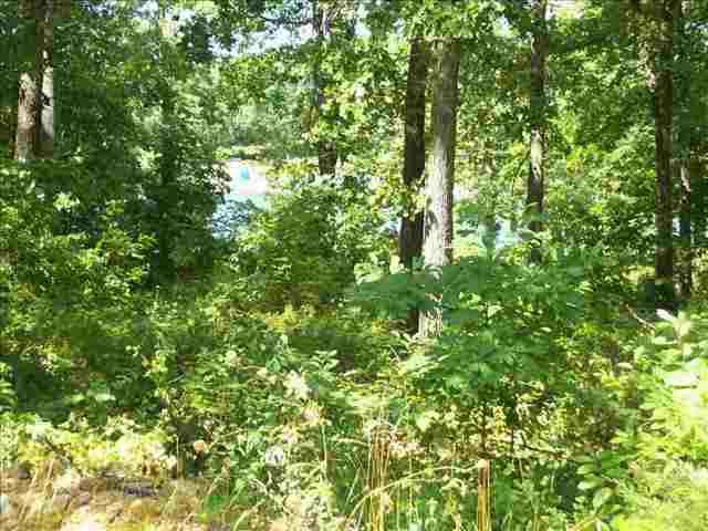 703 Leewood, Horseshoe Bend, AR 72512 (MLS #10193675) :: United Country Real Estate