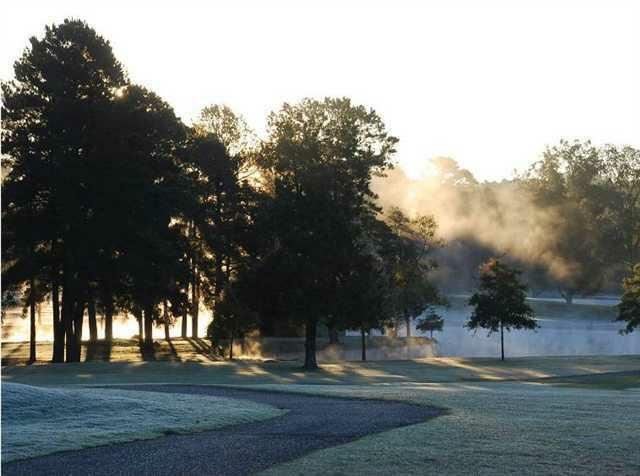 317 Arlington Park - Photo 1