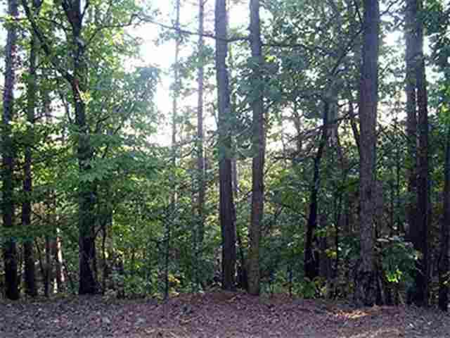20 Tamayo, Hot Springs Village, AR 71909 (MLS #10275696) :: United Country Real Estate