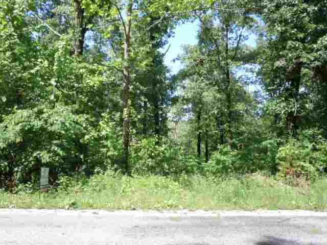 705 Leewood, Horseshoe Bend, AR 72512 (MLS #10282680) :: United Country Real Estate