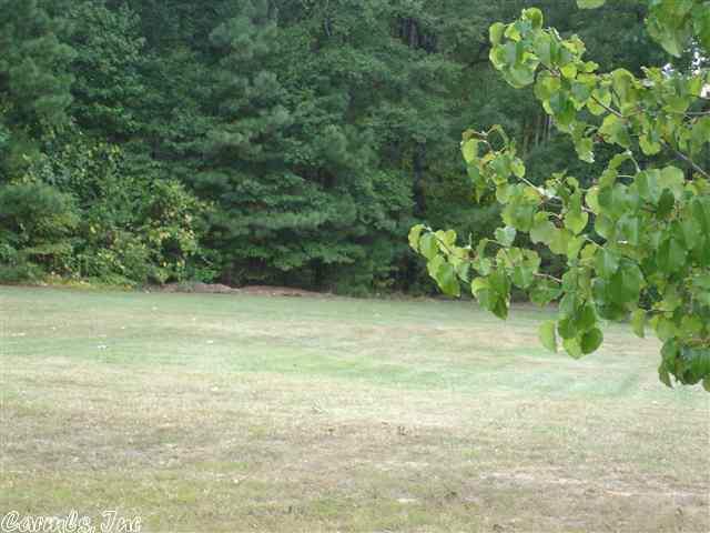11816 Vimy Ridge, Alexander, AR 72002 (MLS #10325098) :: United Country Real Estate