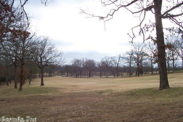 320 W Green Valley, Horseshoe Bend, AR 72512 (MLS #16024569) :: United Country Real Estate