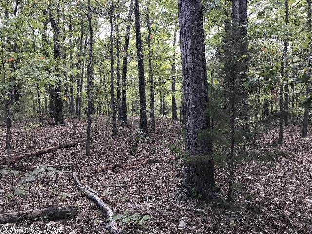 16 Hightop Cove, Fifty-Six, AR 72533 (MLS #19030257) :: United Country Real Estate