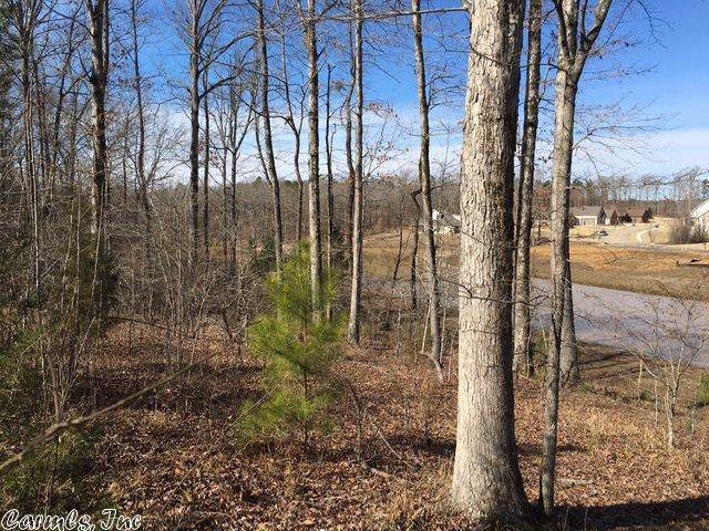 3 Nature Way, Benton, AR 72019 (MLS #19033608) :: Truman Ball & Associates - Realtors® and First National Realty of Arkansas