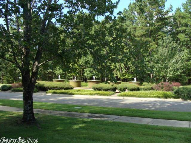 156 Dellmere Drive, Hot Springs, AR 71913 (MLS #20000644) :: United Country Real Estate