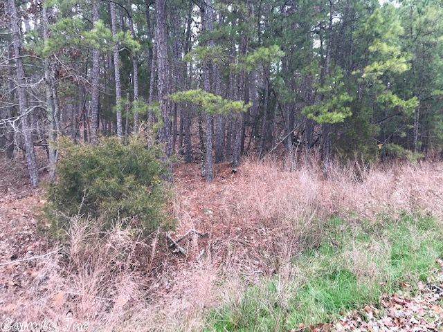 156 Cifuentes, Hot Springs Village, AR 71909 (MLS #20003670) :: United Country Real Estate